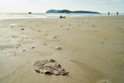 beach-2297845_1920